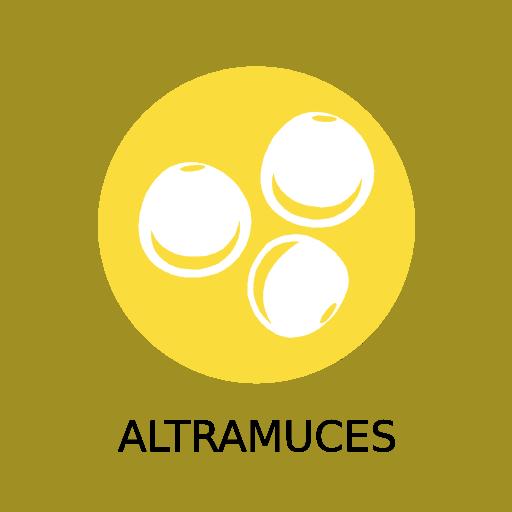 Gestión de alérgenos alimentarios: Descarga los iconos gratis 13
